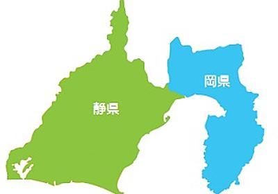 静岡東西分割案、県議会が検討 条例制定へ