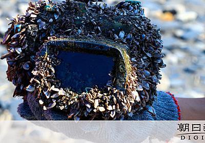 石垣島のデジカメ、台湾に漂着 誰の?写真千枚ヒントに - 沖縄:朝日新聞デジタル