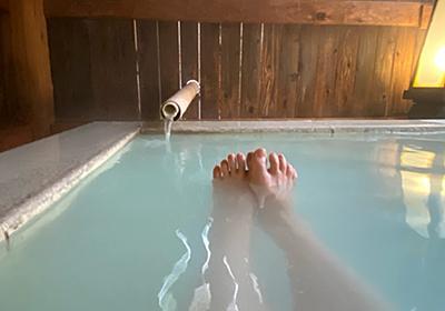 2020年に泊まった温泉宿で「部屋」「風呂」「食事」が良かったおすすめ宿ランキングを発表する - 温泉ブログ 山と温泉のきろく