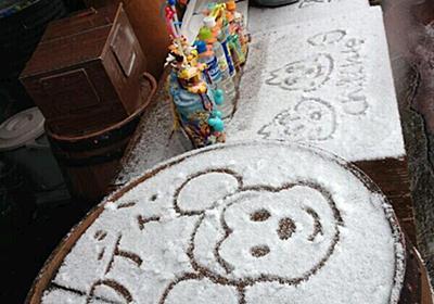 【ディズニー雪祭り】ディズニーランドは雪でもすごいwwwwwwwwww:ハムスター速報