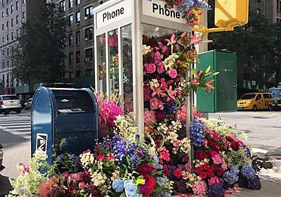 ニューヨークのゴミ箱や電話ボックスに広がる花のインスタレーション - New's World