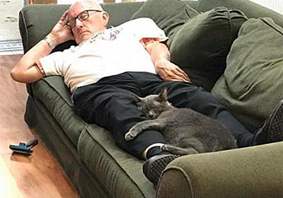 猫たちに大人気。毎日動物施設を訪れ、孤独を抱えた保護猫と一緒にお昼寝するボランティアのおじさん(アメリカ) : カラパイア