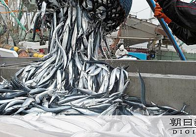 サンマ、なぜ記録的不漁 日本近海を離れる漁場「深刻」:朝日新聞デジタル