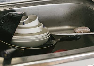 まだ手洗いで消耗してるの?食洗機導入で節約できる時間は約1年にも!   大企業下っ端エンジニアとお金の話