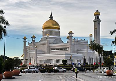 同性愛行為は石打ちで死刑、窃盗は手足切断 ブルネイで新刑法適用へ 写真1枚 国際ニュース:AFPBB News