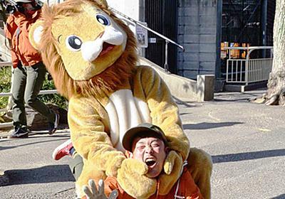 捕獲訓練:ライオン逃走! 天王寺動物園で実施 /大阪 - 毎日新聞