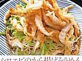 シロエビ――4月解禁の可憐な「富山湾の宝石」|食の安全|PRESIDENT Online