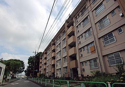 高齢化による分断の影響 「昭和の郊外団地」に分断される高齢者:日経ビジネス電子版