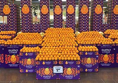 CNN.co.jp : 米で人気急上昇、話題の日本産フルーツ「スモウ・シトラス」とは?  - (1/2)