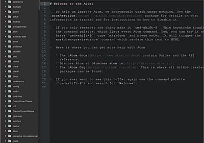 プログラミングが捗りすぎる!コーディングに最適なフォント12選 - paiza開発日誌