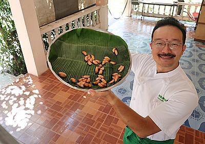 虫を食べることが一般的なラオスで、栄養状態改善のために昆虫養殖を指導する専門家に聞く昆虫食の未来【いろんな街で捕まえて食べる】 - SUUMOタウン