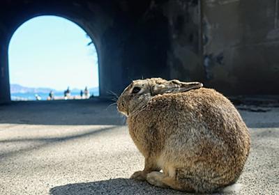 ウサギの島、毒ガスの島『大久野島』に行って来たよ! - 俺と嫁とキャンピングカー