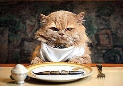 なぜ猫は食べ物を選り好みするのか?最新研究でその謎に迫る : カラパイア