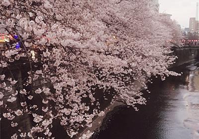 桜の木の下で野点したいな - 一期一会 ~優雅なおうちカフェを楽しむ~