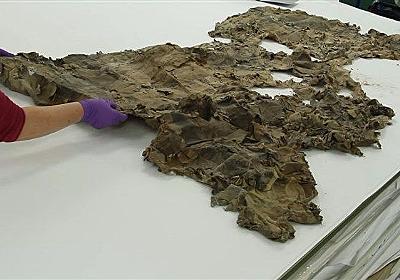 17世紀の地図がスコットランドの煙突から発見される ボロ布の塊が職人芸で大復活 - ねとらぼ