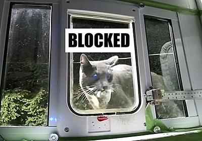 「ネコが獲物を捕らえてきた時だけ」ネコ用のドアをロックするシステムを開発した男性 - GIGAZINE