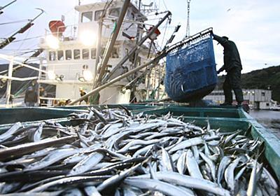 サンマ、「庶民の魚」卒業か 資源保護へ漁獲枠削減  :日本経済新聞