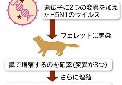 鳥インフルの感染解明 論争呼んだ東大教授の論文公表  :日本経済新聞