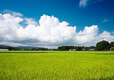 震災から7年たっても福島を「差別させる」のは誰か  WEDGE Infinity(ウェッジ)