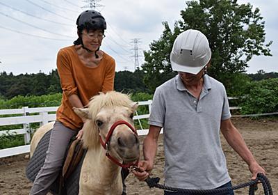 陽の新馬調教?っぽい練習 - 道産子(北海道和種馬)飼育日記