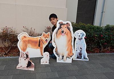 犬が飼えないのでパネルで作る - デイリーポータルZ