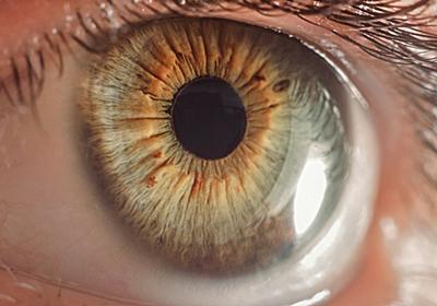 瞳孔の大きさを自由自在に変える能力を持った男性が発見されて科学者を驚かせる - GIGAZINE
