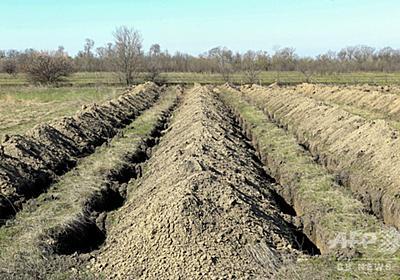 新型コロナ死者に備え墓穴600超を用意、市の対応に賛否 ウクライナ 写真3枚 国際ニュース:AFPBB News