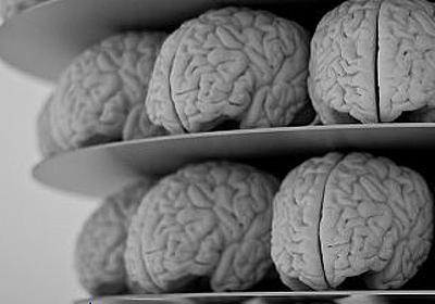 脳トレーニングによる能力アップは「プラシーボ効果」によって生みだされていたことが証明される - GIGAZINE