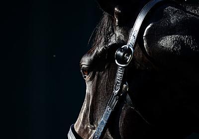 米国で競走馬のドーピングが絶えないのはなぜか?   ナショナルジオグラフィック日本版サイト