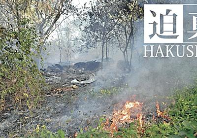 「焼き畑なら投資撤退」 ESGマネー、ブラジルに圧力: 日本経済新聞