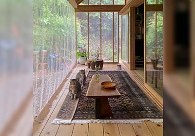 「雨でデッキの縁が濡れるので絨毯を折り、猫がそこにで雨音を聞いている」ツイ主さんがあげた何気ない生活写真が美しすぎる - Togetter