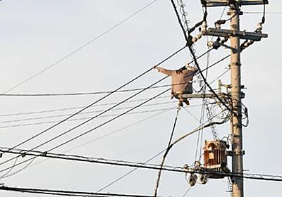 「電柱上に女性がおり、電線を移動している」救助のため周辺一時停電 徳島市|事件・事故|徳島ニュース|徳島新聞