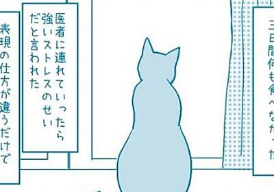 猫は悲しまない生き物だと思っていた―― 猫同士の友情から見えた「猫の感情」を描く漫画に「泣ける」の声 - ねとらぼ