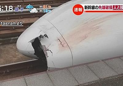 痛いニュース(ノ∀`) : 新幹線「のぞみ」破損 ボンネットから人体の一部が見つかる - ライブドアブログ