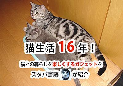 猫との暮らしが楽しくなるガジェットを、猫生活16年のスタパ齋藤さんが紹介 - ソレドコ
