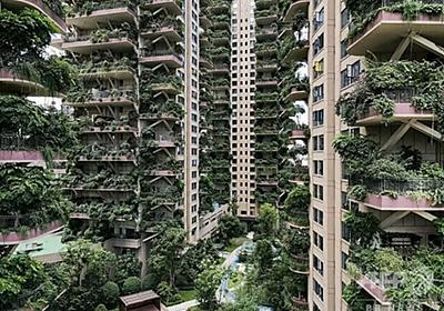 緑あふれる「都会の楽園」中国の集合住宅が蚊の来襲でほぼ無人化 - ライブドアニュース