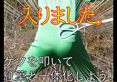 緑の全身タイツを着てケツを引っ叩いたら紅葉と一体化できるのか?問題 - oyayubiSANのブっ飛びブログ