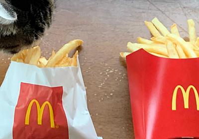 マックポテト「Mサイズのみ」味が変との声がネットであがる マクドナルドに話を聞いた (1/2) - ねとらぼ