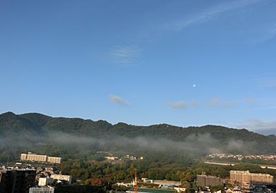 朝霧 流れ来て - ブナ日記