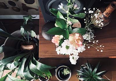ワンコインでポストに届く!花の定期便 Bloomee LIFE ブルーミーライフ | yokoyumyumのリノベブログ