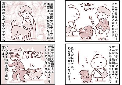 【犬マンガ】保護犬が活躍する名犬映画「ベンジー」って知ってますか? - こぐま犬と散歩〜元保護犬の漫画日記〜