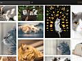 無料で商用利用可能な画像をサクッと検索できるネットサービス「Pixel Mob」 - GIGAZINE