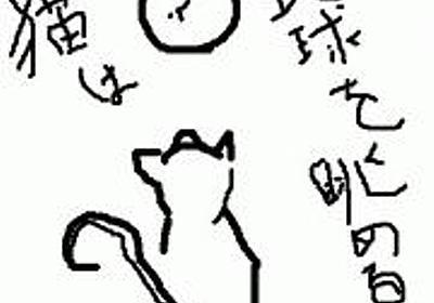 shinoのときどき日記(2009-01-25)