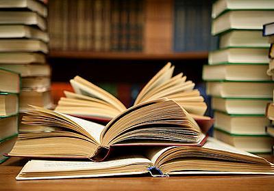 本を読んだら頭が良くなると言うが馬鹿が読めば作者の持論や主観に感化されて馬鹿になるだけじゃないの?:哲学ニュースnwk