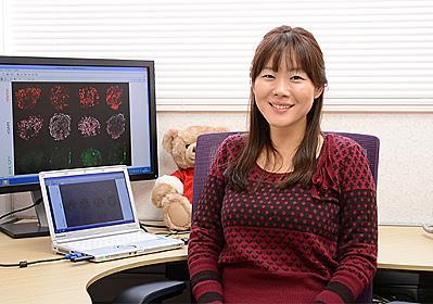 新たな万能細胞「STAP細胞」の開発の黒幕!?:ヴァカンティ4兄弟!? : Kazumoto Iguchi's  blog