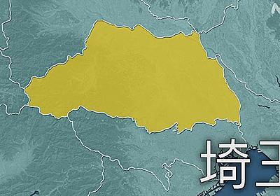 埼玉県 変異ウイルス493人感染 陽性率は前週比7.5ポイント上昇 | 新型コロナ 国内感染者数 | NHKニュース