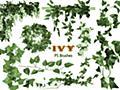無料&商用可!草や葉っぱ、ツタなどに特化したPhotoshop用植物系ブラシ50種【自然/フリー/装飾/イラスト】 - Web Design Facts