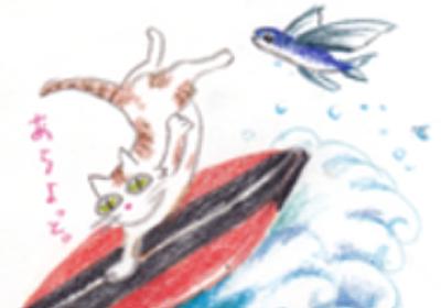 親指シフトと知的生産の関係 | 波乗りヒナのトレード人生行動日記