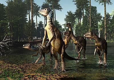 宝石になった恐竜の化石を発見、しかも新種 | ナショナルジオグラフィック日本版サイト