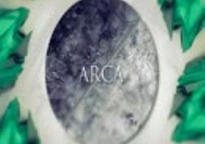 【佳仙ver.】ARCA【歌ってみました(*´ω`*)b】
